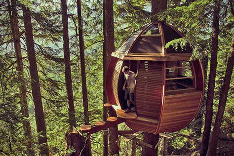 washington tree houses spend a night at treehouse point washington tree house