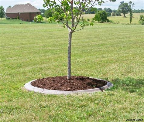 Landscape Edging Around Trees Concrete Landscape Edging Border And Curbing In Mo