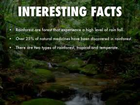 facts and information tropical rainforest biome animal facts and information autos post