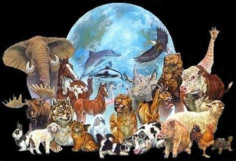 imagenes unicas en el mundo diana teran todos los animales unidos en el mundo