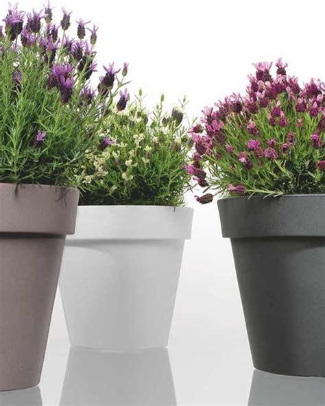 vasi bianchi da esterno i migliori vasi per il tuo giardino in resina o plastica
