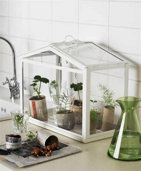 socker greenhouse planters greenhouses and plants on pinterest