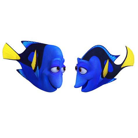 imagenes png free my life buscando a dory imagenes png e imprimibles
