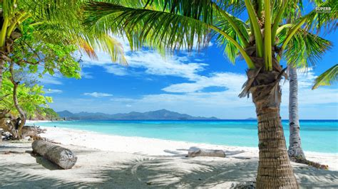 pin beautiful tropical background seascape 1920x1080 509k tropical beach http bestwallpaperhd com tropical beach