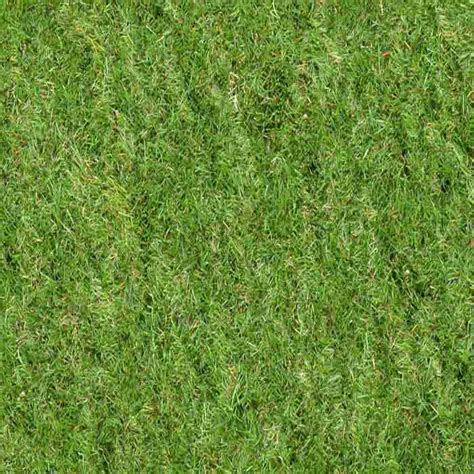 vray sketchup grass tutorial grass in vray evermotion