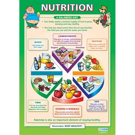 nutrition diagram nutrition chart biology gt forensics gt health nutrition