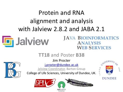 r protein alignment protein and rna alignment and analysis with jalview 2 8 2
