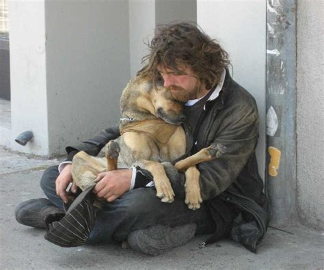how much money is a puppy these photos prove that dogs don t care how much money you grab a tissue for