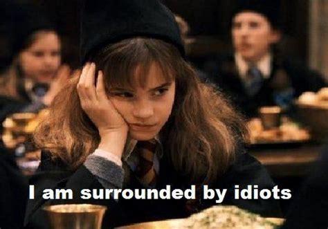Hermione Meme - harry potter hermione granger meme love the look on