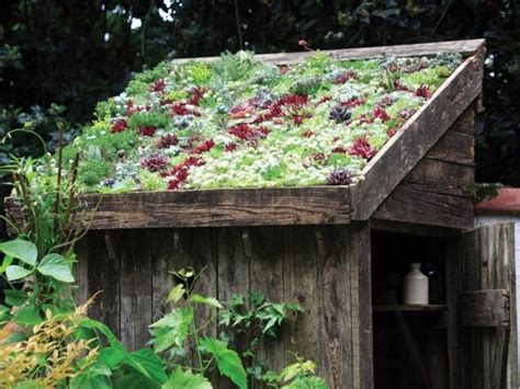 Green Roof For Shed by Green Roof Garden House Exterior In Green Interior