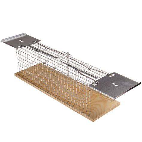 gabbia ratti lebendfalle 38cm trappola a filo box tierfalle per ratti