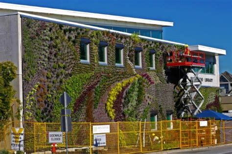 Living Wall Canada Timelapse Shows Installation Of