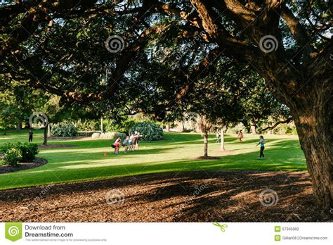 Fit Botanical Gardens Healthy Doing Cross Fit In The Park Editorial Photography Image 57345982