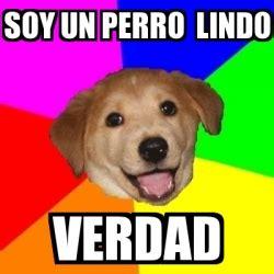 Advice Dog Meme Generator - meme advice dog soy un perro lindo verdad 24933612