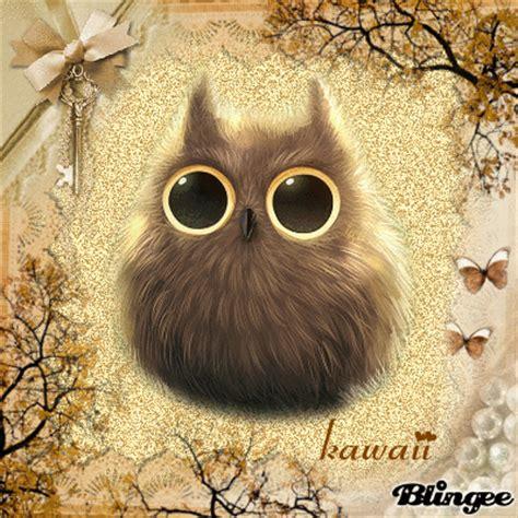 imagenes kawaii de buhos b 250 ho kawaii picture 117401825 blingee com
