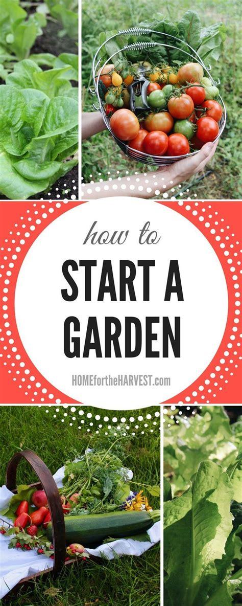 The 25 Best Garden Planning Ideas On Pinterest Summer How To Start A Vegetable Garden For Dummies