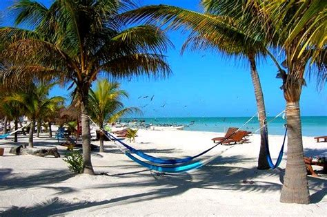 greater than a tourist isla holbox quintana roo mexico 50 travel tips from a local books hotel mawimbi isla holbox quintana roo mexico