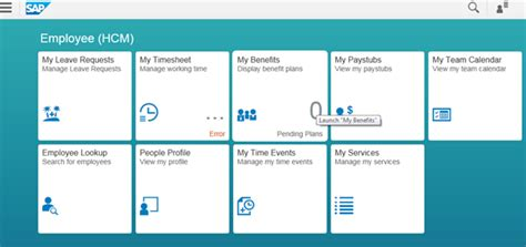 dashboard fiore setup an sap fiori app so that it can be accessed via the