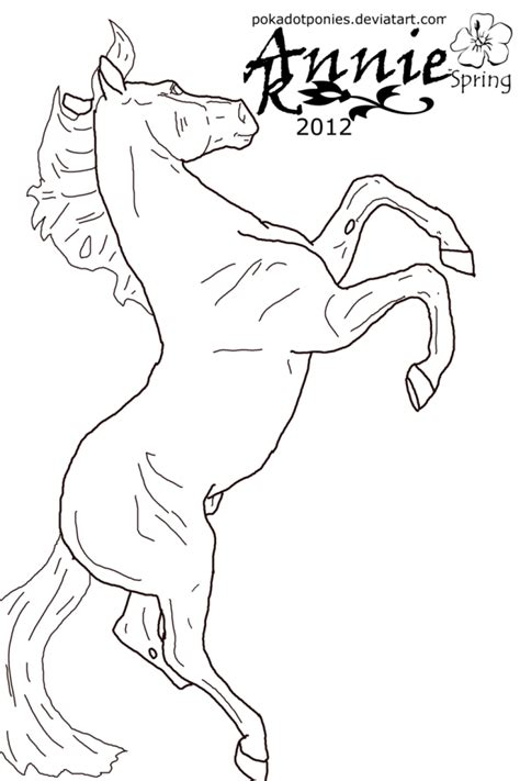 coloring pictures of real horses real horse coloring pages coloring home