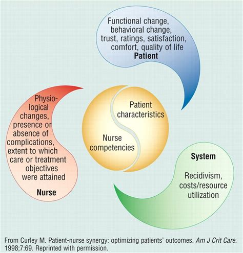Synergy Model Nursing Theory | synergy theory research shmesearch pinterest