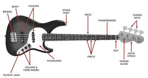 bass guitar buyer s guide the vault at arts