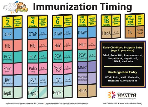 vaccination schedule chart 1000 images about study help on charts failure and diabetes insipidus