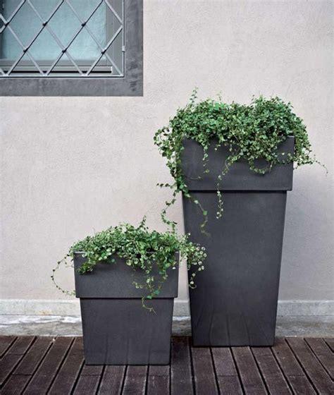 vasi per esterni design vasi esterno design mondiverdi