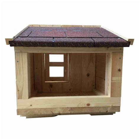 verande per esterno cuccia per gatto da esterno con veranda