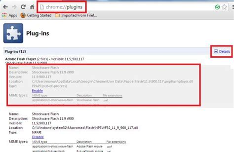 check flash version chrome web browsers