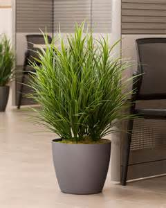 Faux Outdoor Topiary - buy silk grass floor plant at petals