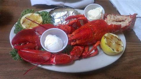 key west seafood buffet key west visit picture of boston lobster feast kissimmee tripadvisor