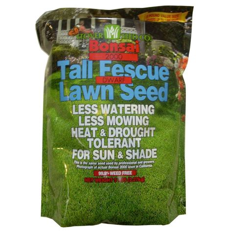 pennington 10 lb annual ryegrass seed 100082632 the
