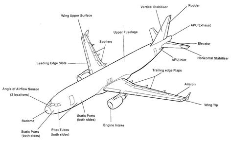 sections of an airplane soumya asiatic