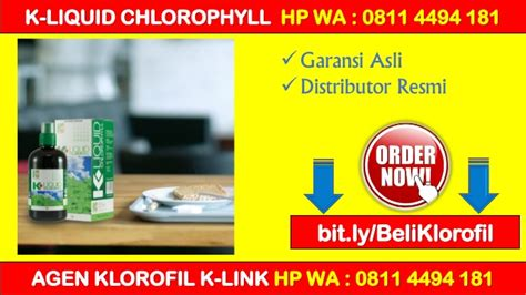 K Liquid Chlorophyll Klorofil Agen Distributor Termurah Grosir promo distributor klorofil k link hp wa 0811 4494 181