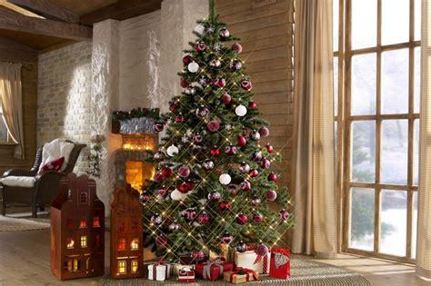 weihnachtsbaum kaufen weihnachtsb 228 ume kaufen was sie bei der wahl beachten sollen