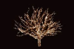 christmas lights decoration ideas 25 best ideas about