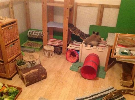 rabbit house 17 best images about great rabbit home ideas on pinterest guinea pigs rabbit