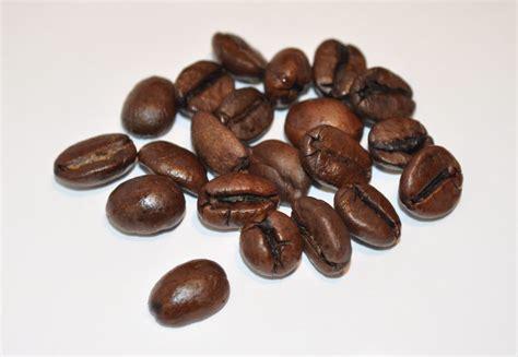 Cappucino Coffee Bean ar 246 mo quot bounce quot espresso bean review the gadgeteer