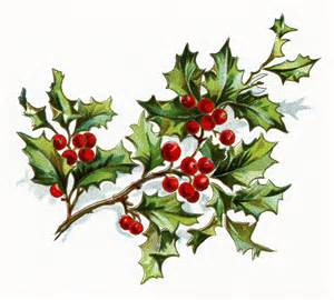 free vintage image holly berries design shop blog