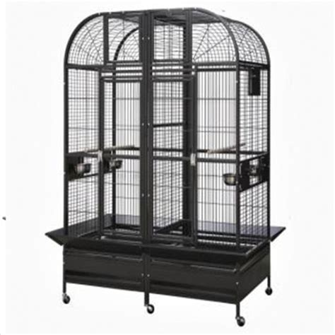 large bird cages quality cages for medium large parrots shipped worldwide