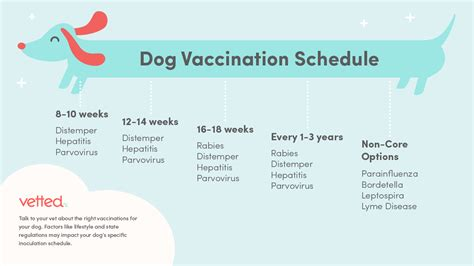Puppy Vaccination Schedule Printable