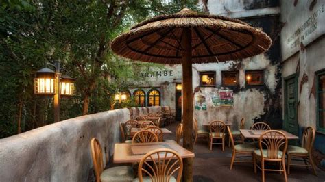 tusker house restaurant tusker house restaurant picture of tusker house orlando tripadvisor