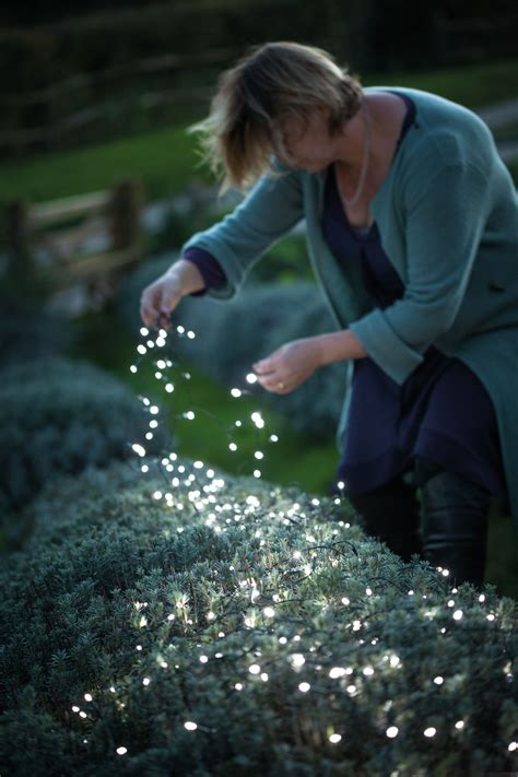lights that don t need electricity 25 flowers that make awesome hanging baskets light