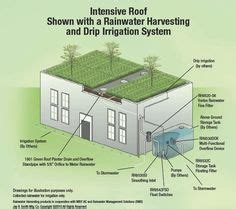 ancon roof drains 1000 ideas about roof drain on green roofs