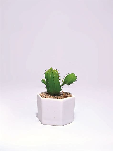 Bath Flower Green succulent with pot green flowers vases bed bath