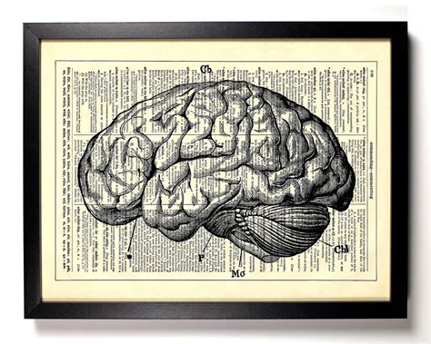 bathtub full of brains anatomy brain home kitchen nursery bath office decor