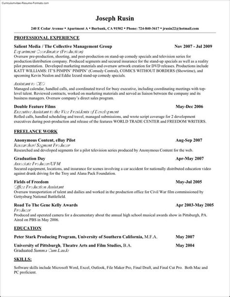 buy resume template buy resume templates free sles exles format
