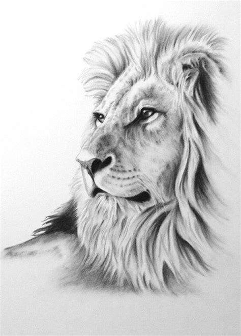 imagenes de leones vintage tattoo finka lion l 246 wen t 228 towierung pinterest finka