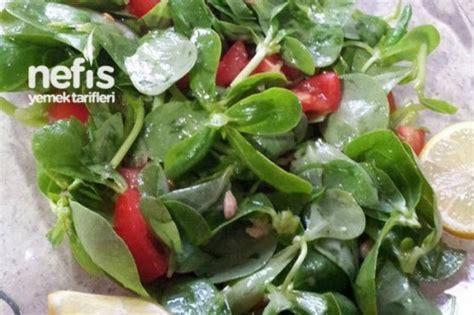 ana sayfa tarifler diyet yemekleri diyet salata tarifleri semizotu salatası yapılışı nefis yemek tarifleri