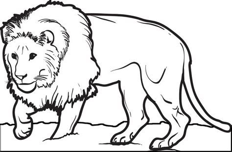 print out share this printable lion coloring pages online free printable male lion coloring page for kids